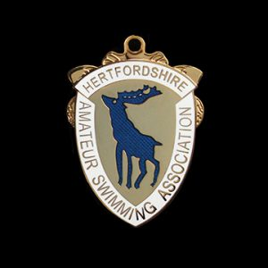 Hertfordshire ASA Champs swimming medal - 42mm gold/silver/bronze enamelled sports pendant - Medals Uk