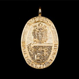 Midlands Water Polo sports medal - 32mm oval gold frosted polished sports pendant featuring crest - by Medals UK